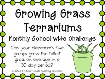 Growing Grass Terrariums ~ Monthly School-wide Science Cha