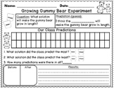 Growing Gummy Bear Science Experiment {FREEBIE}