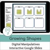 Growing Patterns  | Interactive Digital Visual Models
