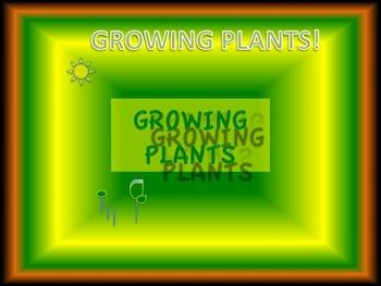 Growing Plants!