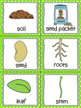 Growing Plants! Read, Write, and Count the Room {Literacy/Math Center} {CCSS}