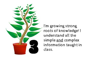Growing Toward Our Learning Goals!  Marzano Levels of Understanding Scale