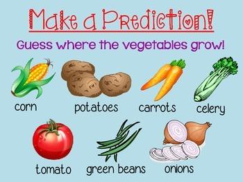 Growing Vegetables Powerpoint