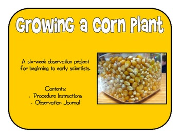 Growing a Corn Plant - Science Observation Unit