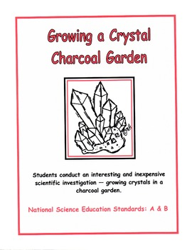 Growing a Crystal Charcoal Garden
