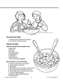 Growing a Salad