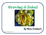 Growing a Salad - Nonfiction text features