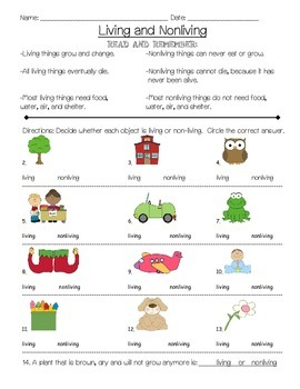 Growing and Changing Activities- Intro to Living vs Nonliving Unit