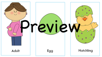Growing and Changing Sequencing Cards