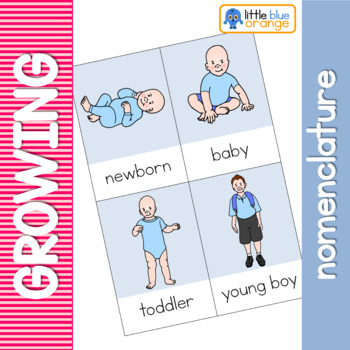 Growing and changing nomenclature cards