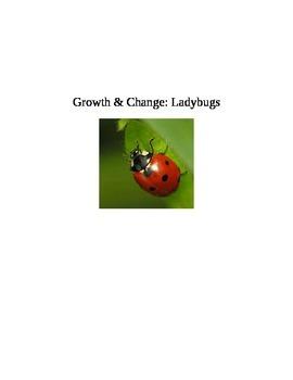 Growth & Change: Ladybugs