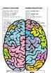 Growth Mindset Activity (editable word.doc version)