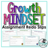 Growth Mindset Assignment Redo Slips