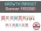 Growth Mindset Banner FREEBIE