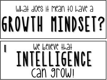 Growth Mindset Beliefs