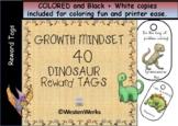 Brag Tags Dinosaurs Growth Mindset