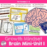 Growth Mindset Brain Unit Lesson Plans