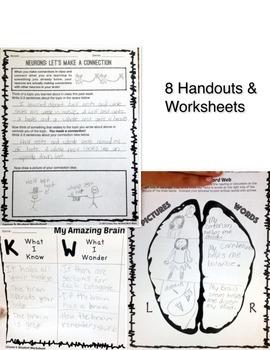 Growth Mindset Brain Unit Lesson Plans *BUNDLE with Bulletin Board*