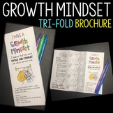 Growth Mindset Brochure