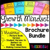 Growth Mindset Brochures