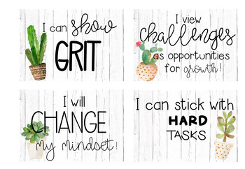 Growth Mindset Challenge/Posters
