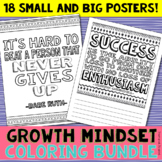 Growth Mindset Coloring Bundle: 18 quotes- Personal Journa