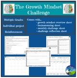 Growth Mindset Affect + Challenge: Project - Application & Reinforcement