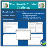Growth Mindset Affect + Challenge: Project - Application &