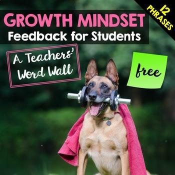 Growth Mindset Feedback for Students: A Teachers' Word Wall FREEBIE!
