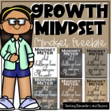 Growth Mindset Mindset Meter Freebie