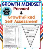 Growth Mindset Pennant & Self-Assessment