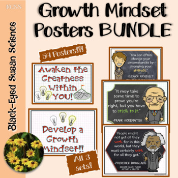 Growth Mindset (Positive Thinking) Posters Bundle