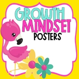 Growth Mindset Posters