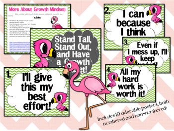 Growth Mindset Posters and Writing (Flamingo Chevron Theme)