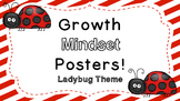 Growth Mindset Posters:  Ladybug Theme!