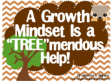 Growth Mindset Posters and Writing Activities (Woodland Fo