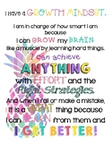 Growth Mindset Quote Posters Pineapple Theme
