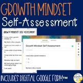 Growth Mindset Self-Assessment