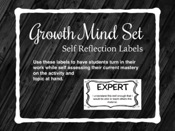 Growth Mindset Student Assessment Labels