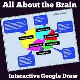 Growth Mindset Sample- Understanding the Brain Google Draw Interactive Activity