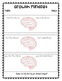 Growth Mindset  vs  Fixed Mindset Comparison
