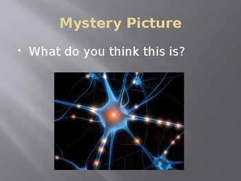 Growth Mindset / Brain: Mystery Picture Powerpoint (editable)