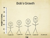 Growth Patterns Review Powerpoint
