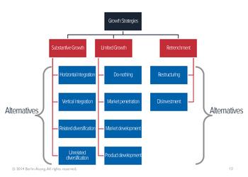 Growth Strategies (HND Version)