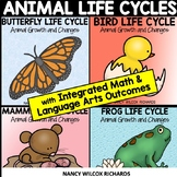 Animal Life Cycles | Growth and Changes in Animals BUNDLE| Butterfly, Frog, Bird