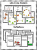 Growth and Changes in Animals: Life Systems Grade 2