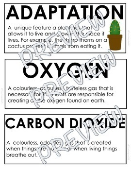 ONTARIO SCIENCE: GR. 3 GROWTH AND CHANGES IN PLANTS ILLUSTRATED WORD WALL CARDS