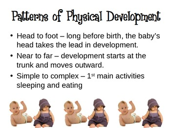 Growth and Development of Infants Powerpoint for Child Development