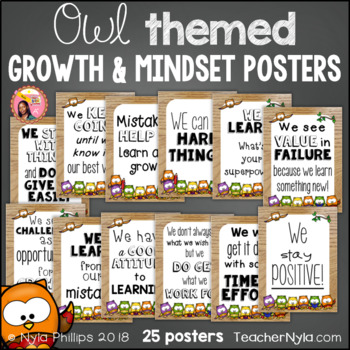 Growth and Mindset Affirmation Posters - Owl Theme