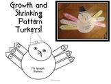 Growth and Shrinking Pattern Turkey Craft